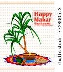 makar sankranti  hindu festival ... | Shutterstock .eps vector #772800553