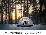 Stock photo two dogs in a tent on snow in the forest travel with a pet adventure together nova scotia duck 772861957