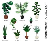 vector isolated set various... | Shutterstock .eps vector #772869127