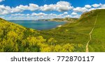 south west coast path with a... | Shutterstock . vector #772870117