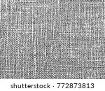 abstract black and white... | Shutterstock .eps vector #772873813