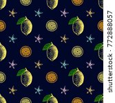 citrus seamless pattern. hand...   Shutterstock .eps vector #772888057