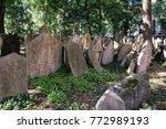 prague czech republic  ... | Shutterstock . vector #772989193