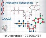 adenosine diphosphate  adp ... | Shutterstock .eps vector #773001487