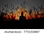 lonely man standing in sunset... | Shutterstock . vector #773153887
