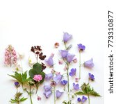 floral background with... | Shutterstock . vector #773310877