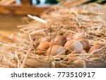 eggs in hay in a chicken coop... | Shutterstock . vector #773510917