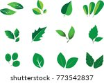 green abstract leaf icons... | Shutterstock .eps vector #773542837