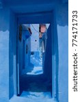 traditional moroccan courtyard... | Shutterstock . vector #774171733