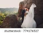 the charming brides embracing... | Shutterstock . vector #774176527