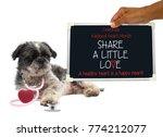"celebrate national heart month ""... | Shutterstock . vector #774212077"