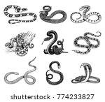 set viper snake. serpent cobra... | Shutterstock .eps vector #774233827