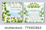 floral vector card set with...   Shutterstock .eps vector #774302863