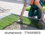 natural grass turf professional ... | Shutterstock . vector #774345853