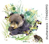 bear cub. forest animals... | Shutterstock . vector #774400993