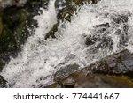 rushing clean water in deep... | Shutterstock . vector #774441667
