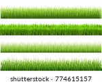 a set of green grass varieties. ... | Shutterstock .eps vector #774615157