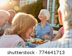 group of senior friends... | Shutterstock . vector #774641713