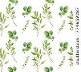 watercolor seamless pattern....   Shutterstock . vector #774659287