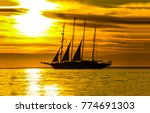 sunset sea ship silhouette... | Shutterstock . vector #774691303