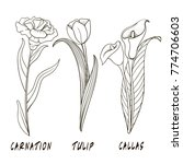 flowers in style hand drawing.... | Shutterstock . vector #774706603
