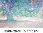 spirit orbs attracted to... | Shutterstock . vector #774714127