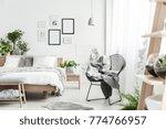 blanket on designer chair in...   Shutterstock . vector #774766957