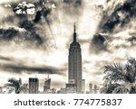 new york city   june 2013  the... | Shutterstock . vector #774775837