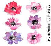 floral set. collection with... | Shutterstock . vector #774924613