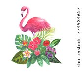exotic bouquet with pink... | Shutterstock . vector #774934657
