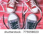 two pairs of textile sneakers... | Shutterstock . vector #775058023