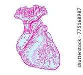 sketch of human heart. hand... | Shutterstock .eps vector #775168987