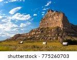 oregon trail parkway in scotts... | Shutterstock . vector #775260703