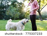 photo of woman on walk with... | Shutterstock . vector #775337233
