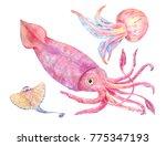 squid  batoidea  jellyfish. sea ...   Shutterstock . vector #775347193