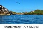 isla isabel a volcanic island... | Shutterstock . vector #775437343