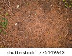 from above dry ground texture... | Shutterstock . vector #775449643