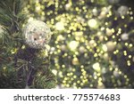 decorated christmas tree on... | Shutterstock . vector #775574683