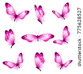 Stock vector beautiful pink butterflies isolated on a white 775628527