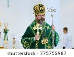 sviatoslav shevchuk  the major...   Shutterstock . vector #775753987