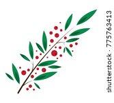 rowan bunch of red berries red... | Shutterstock . vector #775763413