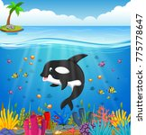 cartoon whale under the sea | Shutterstock .eps vector #775778647