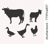 silhouette of vector cattle | Shutterstock .eps vector #775916857