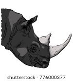 portrait of a rhinoceros. can... | Shutterstock .eps vector #776000377