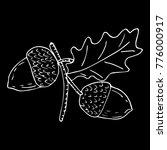 acorn vector illustration   Shutterstock .eps vector #776000917