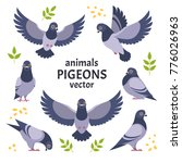 Pigeons Collection. Vector...