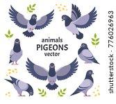 pigeons collection. vector... | Shutterstock .eps vector #776026963