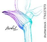 nifty gental  hand drawn... | Shutterstock .eps vector #776127373