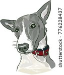 black and white dog head  | Shutterstock .eps vector #776228437