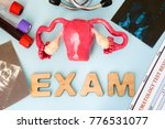 uterus ovary and cervix... | Shutterstock . vector #776531077